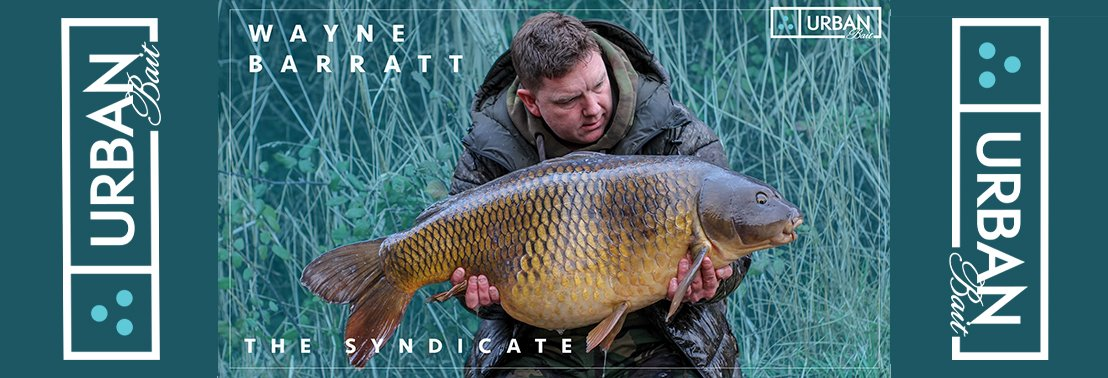 Syndicate New