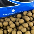 Tuna and Garlic Boilies